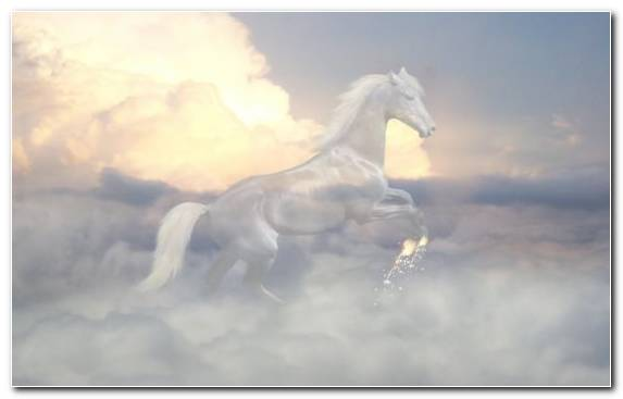 Image Clouds Mustang Horse Mane Cumulus Cloud