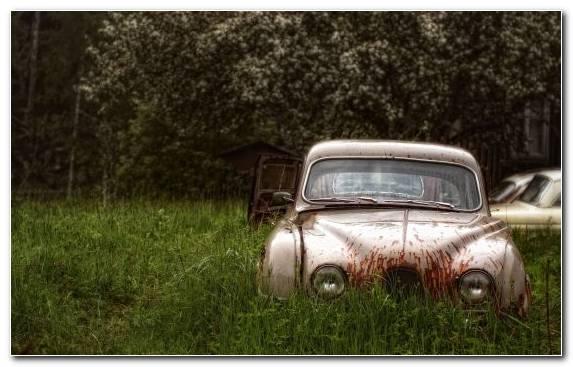 Image Compact Car Vintage Car Car Factory Grasses