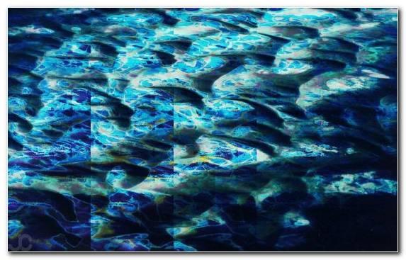 Image Coral Reef Coral Reef Blue Art