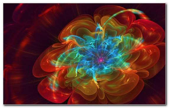 Image Creative Arts Art Petal Light Fractal Art