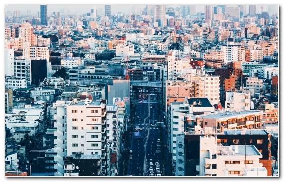 Image Daytime Day Urban Area Tokyo Tokyo Tower