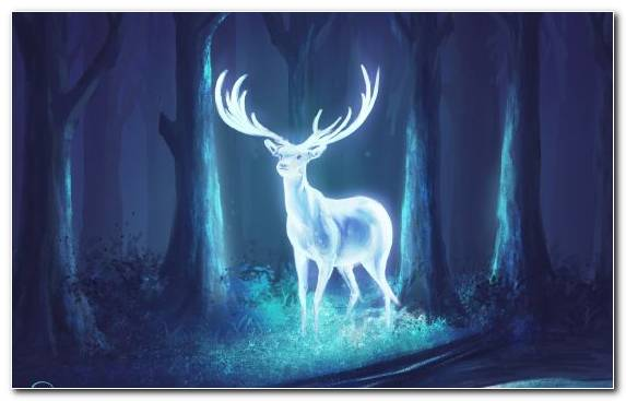 Image Deer Blue Night Ice Fantasy