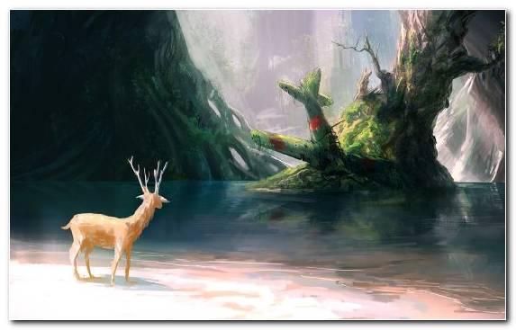 Image Deer Digital Painting Art Fantastic Art Painting