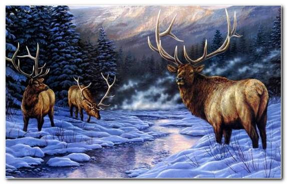 Image Deer Painting Snow Wildlife Winter