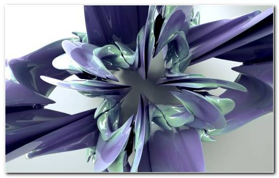 Image Digital Art Flower Factory Petal Floral Design