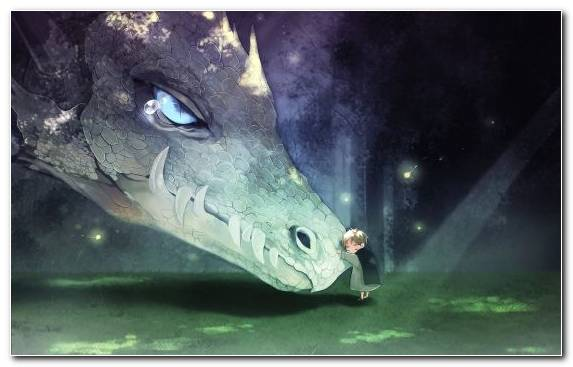 Image Dragon Fantasy