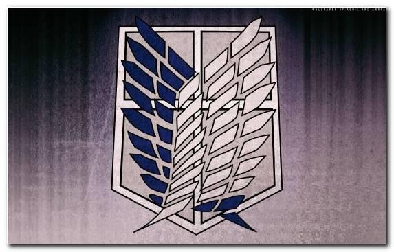 Image Eren Yeager Design Pattern Mikasa Ackerman Angle