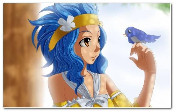 Image Erza Scarlet Fairy Tail Manga Natsu Dragneel Figurines