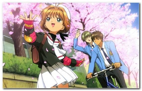 Image Fiction Sakura Kinomoto Clamp Cardcaptor Sakura Cerberus