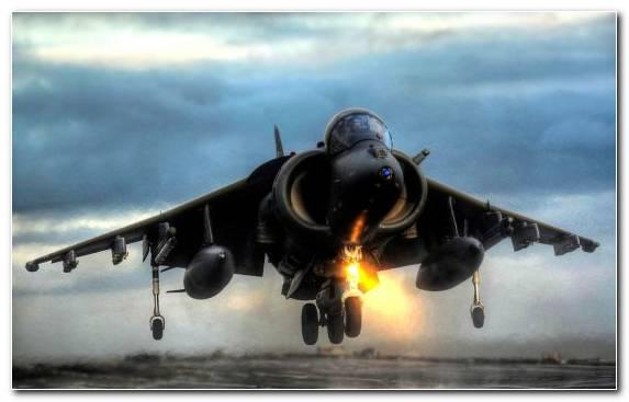 Image Fighter Aircraft Grumman F 14 Tomcat Jet Aircraft Hawker Siddeley Harrier Air Force