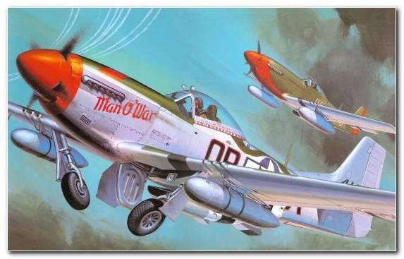 Image Fighter Aircraft Model Aircraft P 51D Hasegawa Corporation Mockup