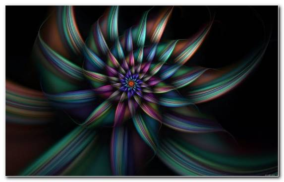 Image Flora Fractal Art Circle Symmetry Abstract Art