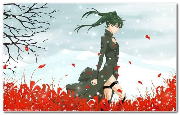 Image Flora Tree Sanae Kobayashi Illustration Red