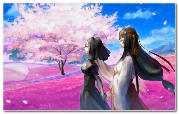 Image Flower Purple Sky Spring Nature