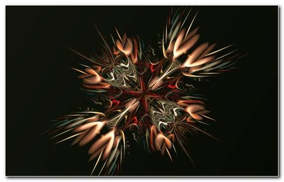Image Fractal Art Geometric Shape Fireworks Macro Photography Shape