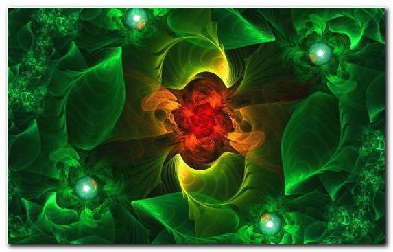 Image Fractal Art Special Effects Green Illustration Fractal