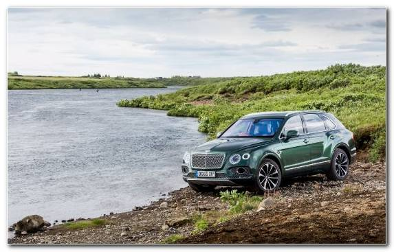 Image Geneva Motor Show Bentley Off Roading Mountainous Landforms Transport