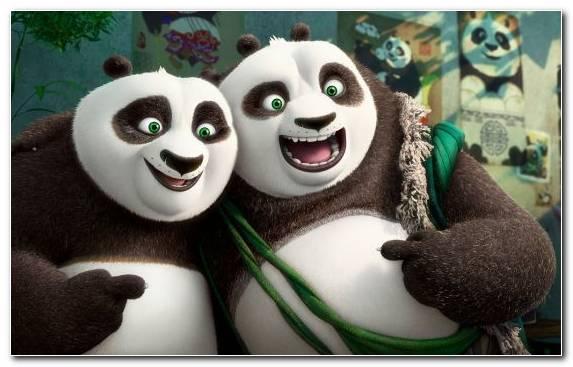 Image Giant Panda Kung Fu Panda 3 Jack Black Po Snout