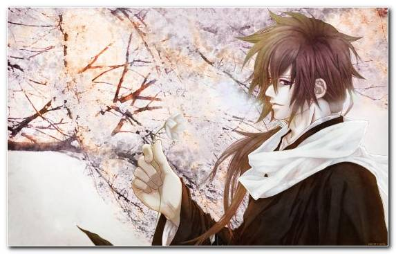 Image Girl Illustration Shinsengumi Brown Hair Anime