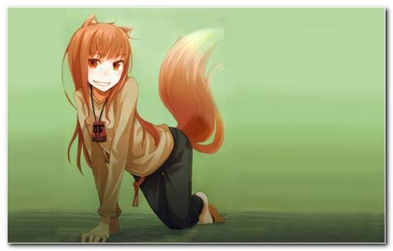 Image Girl Spice And Wolf Cartoon Fox