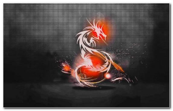 Image Graphic Design Background Orange Light Font