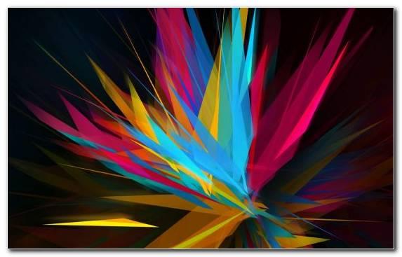 Image graphics close up light symmetry petal