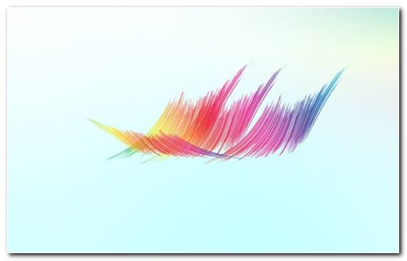 Image graphics minimalism pink creative arts feather