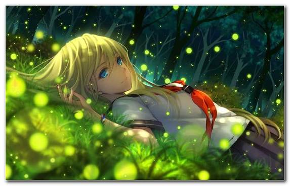 Image Grass Ecosystem Flora Anime Green