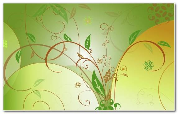 Image Green Plant Stem Abstract Art Leaves Illustration