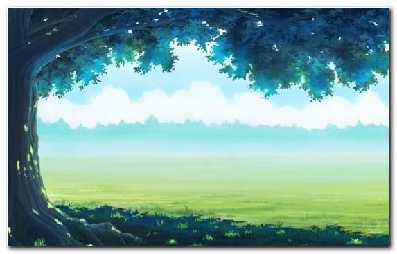 Image Haruhi Suzumiya Grass Ecosystem Landscape Grazing