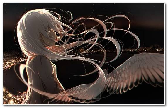 Image Hatsune Miku Pierrot Feather Graphics Anime