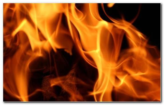 Image Heat Skewer Light Conflagration Fire