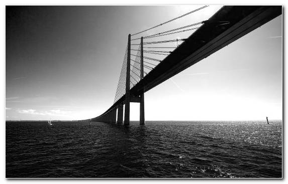 Image Horizon Sky Suspension Bridge Black Monochrome Mode