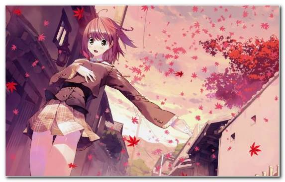 Image Illustration Manga Art Pink Flower