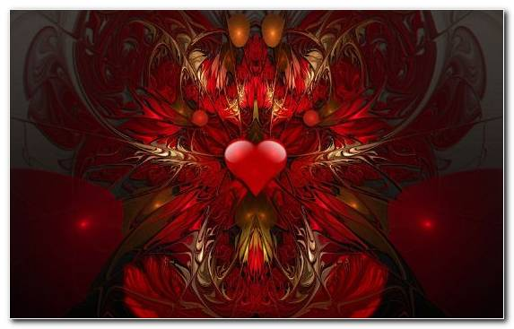 Image Illustration Organ Heart Symmetry Art