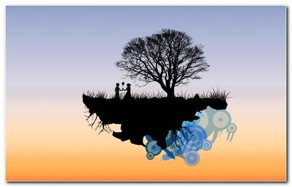 Image Illustration Sky Tree