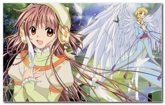 Image Kobato Illustration Mangaka Kimihiro Watanuki Cardcaptor Sakura