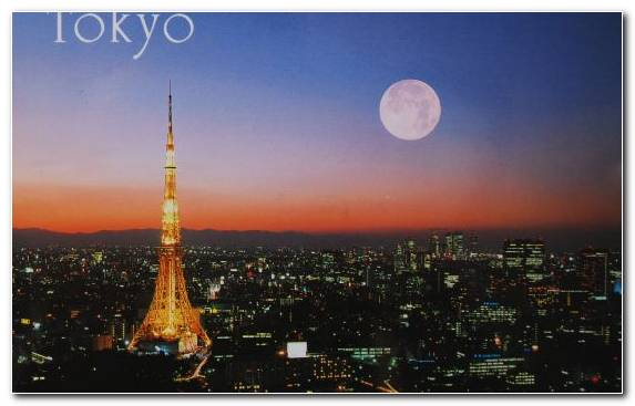 Image Landmark Atmosphere Night Tower Tokyo Tower