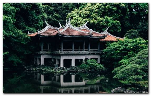 Image Leaf Chinese Architecture Nature Shinto Shrine Factory