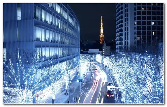 Image Lighting Tokyo Tower Tree Cityscape Ice