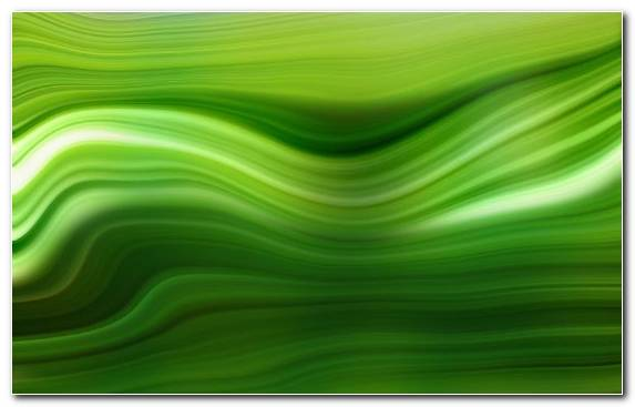 Image Line Green Handheld Devices Grasses Abstract Art