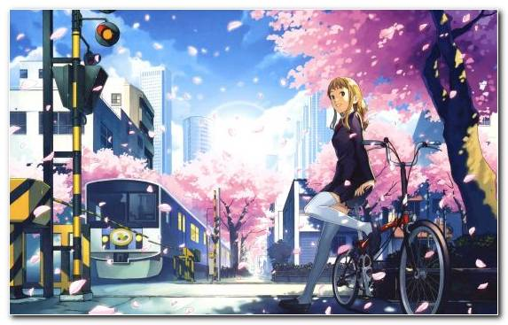 Image Mangaka Sakura Computer Wallpaper Illustration Schoolgirl