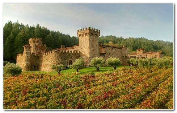 Image Medieval Architecture Castle Estate Village Rural Area