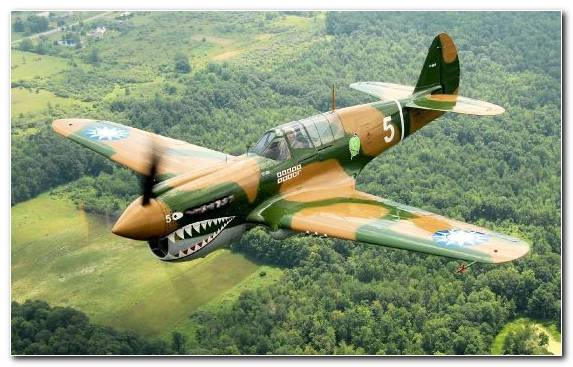 Image Military Aircraft Fighter Aircraft Military Curtiss P 40 Warhawk Aviation