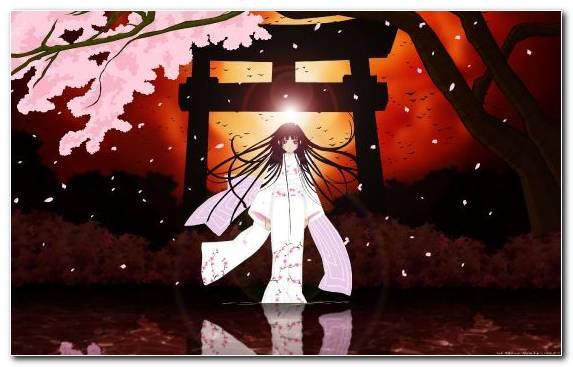 Image Mio Yamazaki Illustration Japanese Geisha