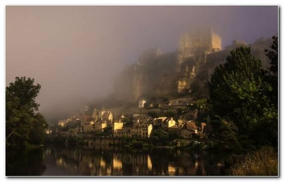 Image Mist Fog Sky River Tree