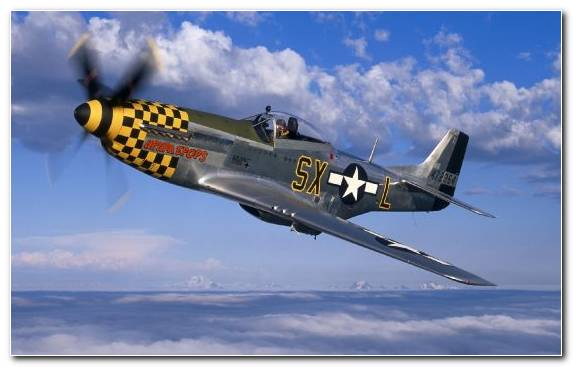 Image Monoplane Propeller Military Aircraft North American A Apache The P 51 Mustang