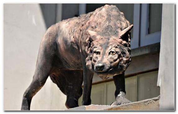 Image Monument Snout Sculpture Statue