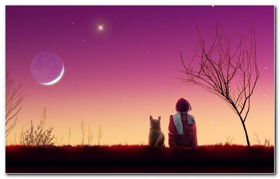 Image Moon Astronomical Object Nature Night Kimi Ni Todoke