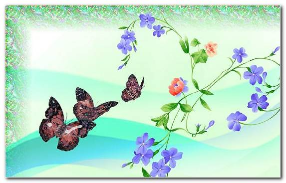 Image Moths And Butterflies Butterfly Pollinator Design Violet